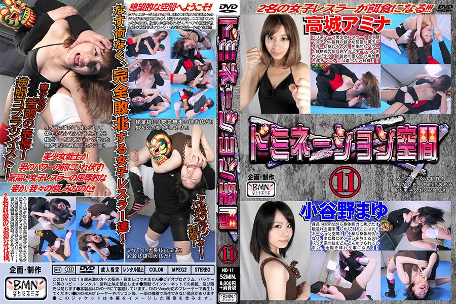 ドミネーション空間11 小谷野まゆ & 高城アミナ DVD パッケージ 画像