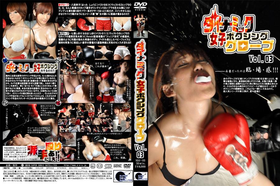 ダイナミック女子ボクシンググローブ Vol.03 八田祥子 vs 七葉しほり DVD パッケージ 画像