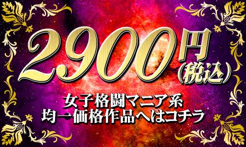 2900円作品